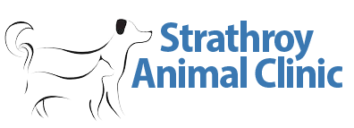 Strathroy Animal Clinic